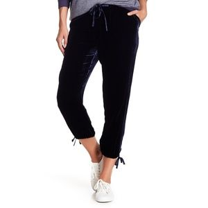 NWT Black Joie Dyre Velvet Pants Sz M